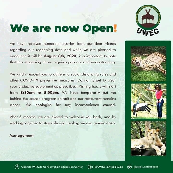 Uwec Zoo Opens Up Again To All Tourists In 2020 Tourist Dear Friend Zoo