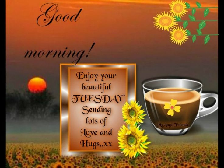 Good Morning Enjoy Your Beautiful Tuesday Pictures, Photos, And .