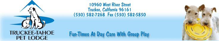Doggy Day Care in Truckee - Tahoe City, CA 96161