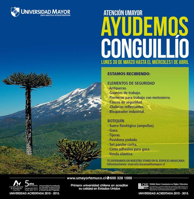#SOSsalvemosConguillío  ¡Unámonos en esta campaña de ayuda! #Temuco #Ayuda #SomosChile #UMayorTemuco #UMayor