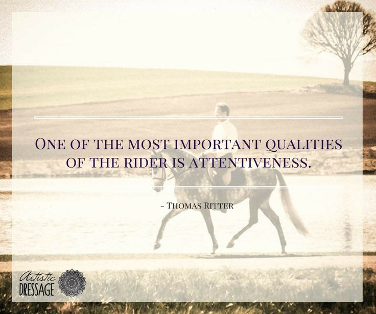 """""""One of the most important qualities of the rider is attentiveness."""" - Thomas Ritter artisticdressage.com"""