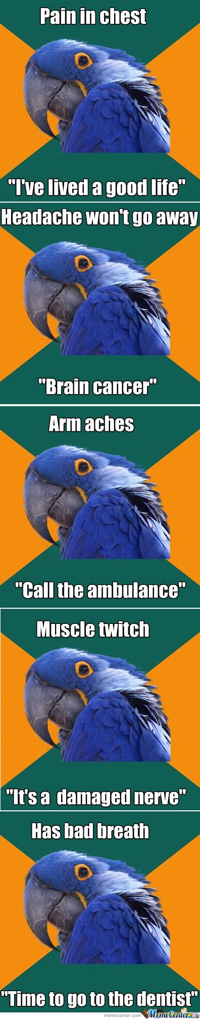 This one is for all you hypochondriacs! // Paranoid Parrot Meme | Slapcaption.com