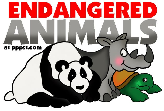 Endangered Animals - FREE Presentations in PowerPoint format, Free Interactives