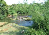 Wayanad 4 Nights 5 Days Family Package