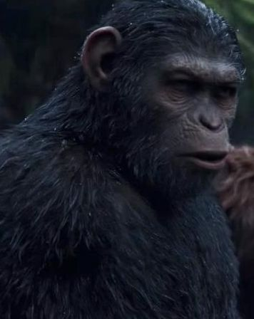Watch War for the Planet of the Apes Full Movies Online Free HD  ᐈᐉ http://4k.useehd.us/?do=watch&id=281338  War for the Planet of the Apes Off Genre : Drama, Science Fiction, War Stars : Andy Serkis, Woody Harrelson, Steve Zahn, Karin Konoval, Terry Notary, Ty Olsson Release : 2017-07-11 Runtime : 140 min.