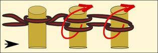 punto maglia, rovescio e piatto per telaio circolare ben illustrato