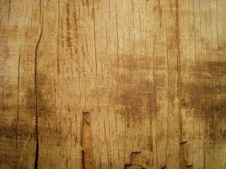 wood texture - Free Large Images