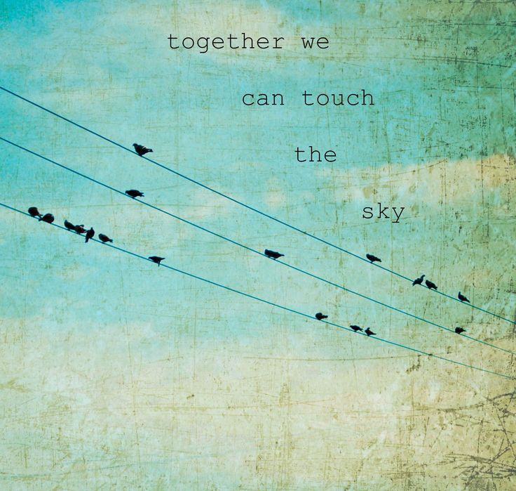 Together we can touch te sky   quote    Blackbirds & Bumblebees