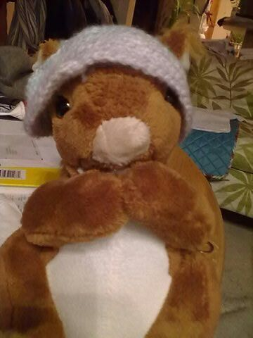 cat's hat on the plush