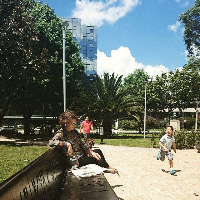Сижу в парке, хочу книжку почитать, но вокруг столько интересного) Хотела сфотограировать красивую даму с собачкой, а в кадр вбежал мальчик)