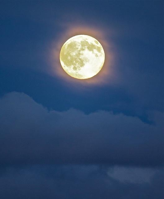Moon Shadow, Moon Shadow