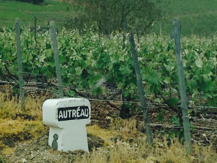 Champagne Autreau