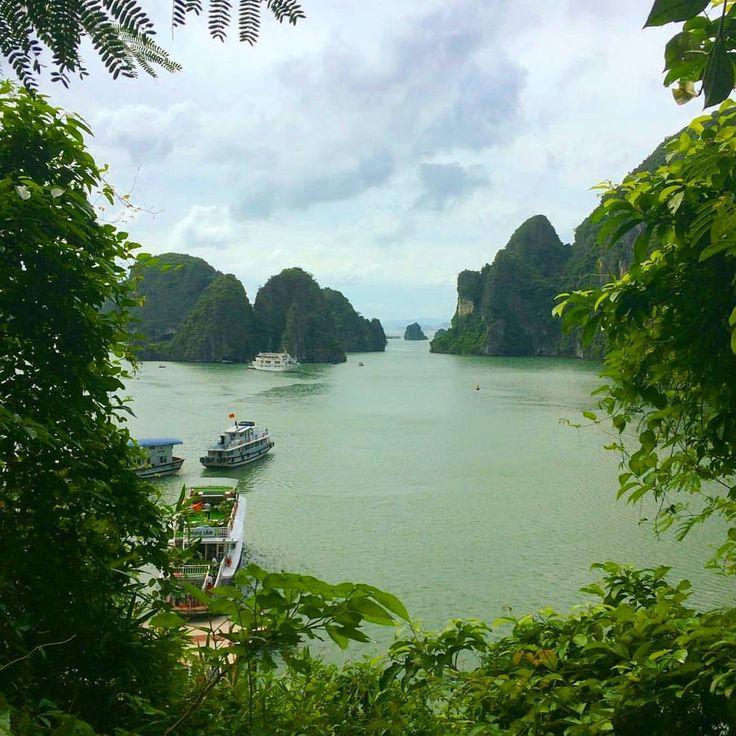 Vịetnam Hạ Long (Ha Long Bay)Bekijk deze Instagram-foto van @loesensuusopreis • 158 vind-ik-leuks Vịetnam