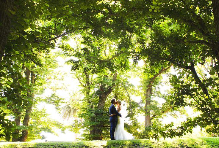 #weddingphotography #wedding #love