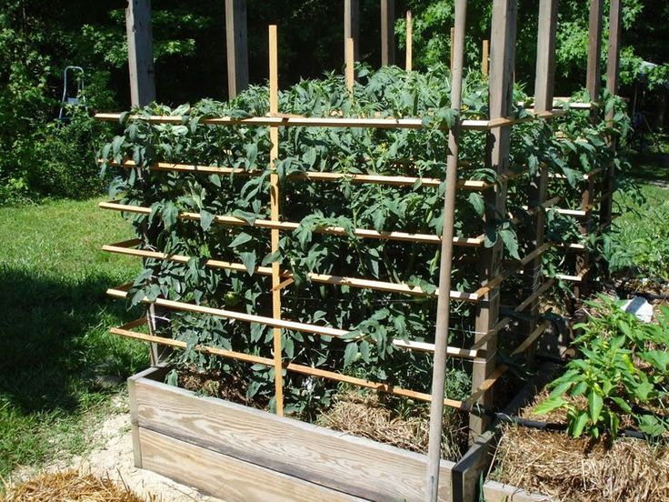 Straw bale garden site