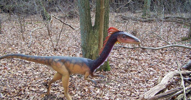 Actividades temáticas de dinosaurios para niños en edad preescolar. Los estudiantes de preescolar a menudo se sienten fascinados por los dinosaurios, de manera que es un tema entretenido para usar. Los dinosaurios pueden encajar en tus planes de lecciones para arte, matemáticas y ciencia con algunas actividades que involucren a los estudiantes de modo creativo. Organiza tu aula en torno a estos gigantes extintos ...