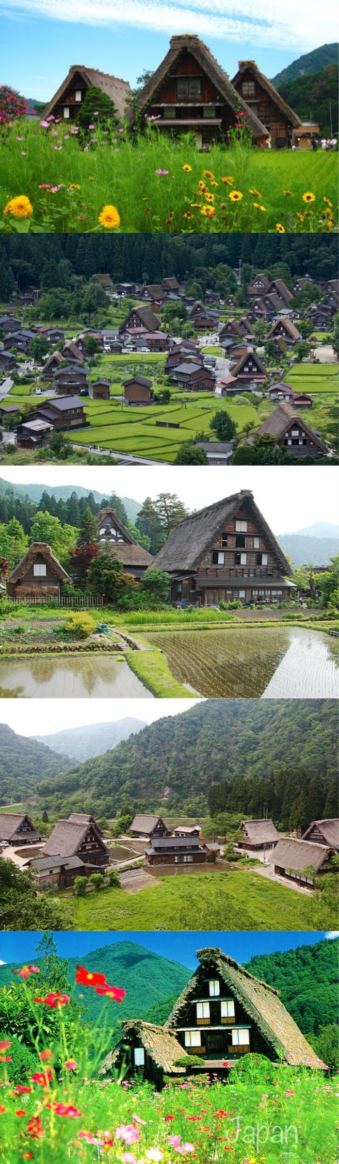 The Shirakawa-go and neighboring Gokayama regions line the Shogawa River Valley in the remote mountains that span from Gifu to Toyama Prefectures. Declared a UNESCO world heritage site in 1995, they are famous for their traditional gassho-zukuri farmhouses, some of which are more than 250 years old.