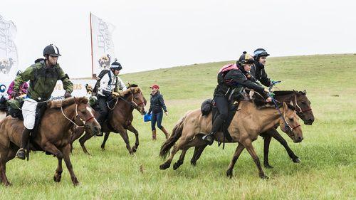Mongol Derby #horses