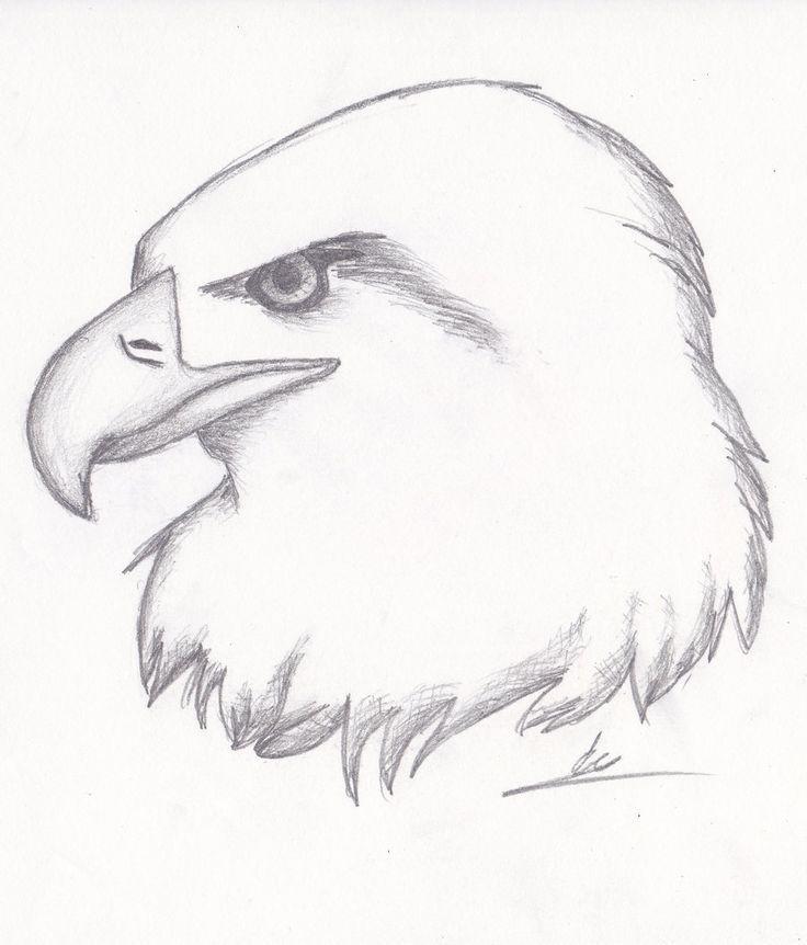 зверек красивые рисунки простым карандашом животные для начинающих разобрался