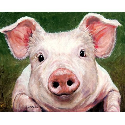 """SWEET LITTLE BABY PIG, PIGLET, with a Precious Expression, on Green Background PIG ART 8x10"""" PRINT BY PAINTER, DOTTIE DRACOS, Farm Animal Art  This is an 8x10"""" print (on 8.5 x 11"""" paper) of the origin"""