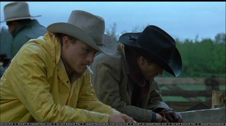 Jake Gyllenhaal Images of Brokeback Moutain - Yahoo Image Search Results