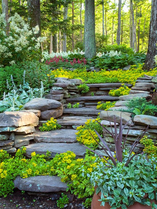 Forest Frolic: Gardens Ideas, Stones Step, Hillside Landscape, Stone Steps, Paths, Natural Stones, Backyard, Landscape Ideas, Gardens Stairs