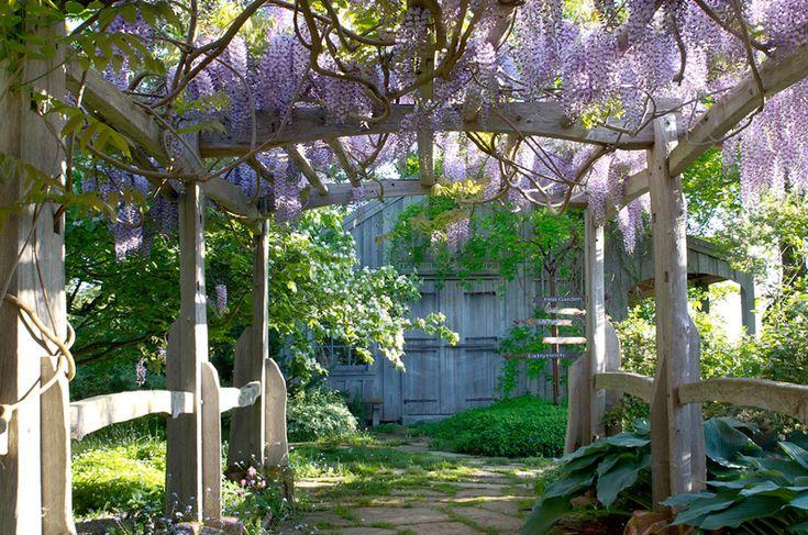 Tangled Garden | novascotia.com