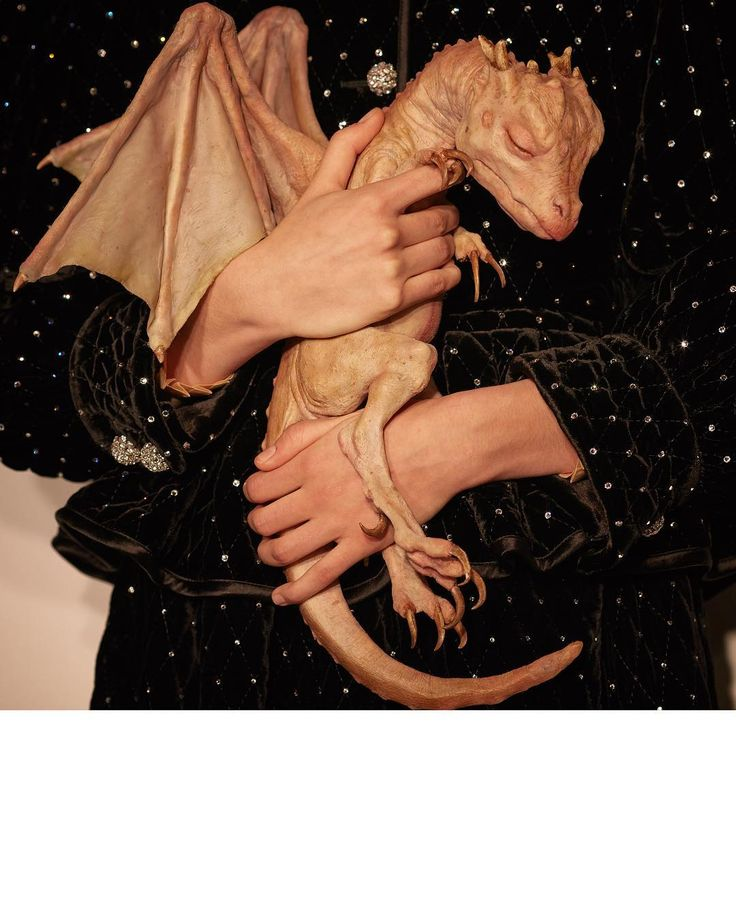 Mysterious creatures: a model in a quilted velvet jacket carrying a dragon walks the #GucciFW18 show. Inspired by the 'Legend of the baby dragon in the jar', the real story of an author who staged finding a baby dragon in his garage in Oxfordshire, England. @makinariumsfxvfx #AlessandroMichele #mfw