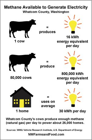 Biogas Digesters to Turn Manure from Livestock into Fuel.