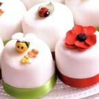 Recepten om de lekkerste taarten te bakken | Deleukstetaartenshop.nl