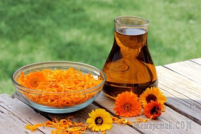 Масло календулы — свойства и применение