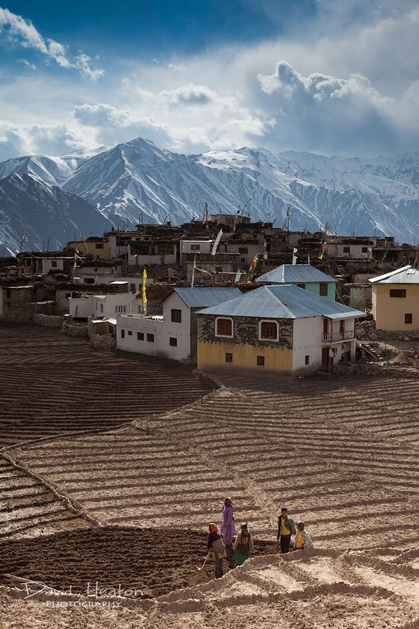 Nako, Himachal Pradesh, India
