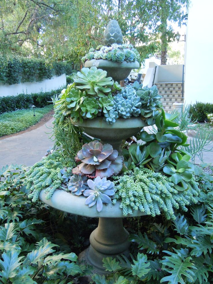 succulent fountain, looks like flowing water: Gardens Ideas, Succulents Fountain, Yard, Birdbaths, Water Features, Succulents Gardens, Gardens Fountain, Plants, Birds Bath