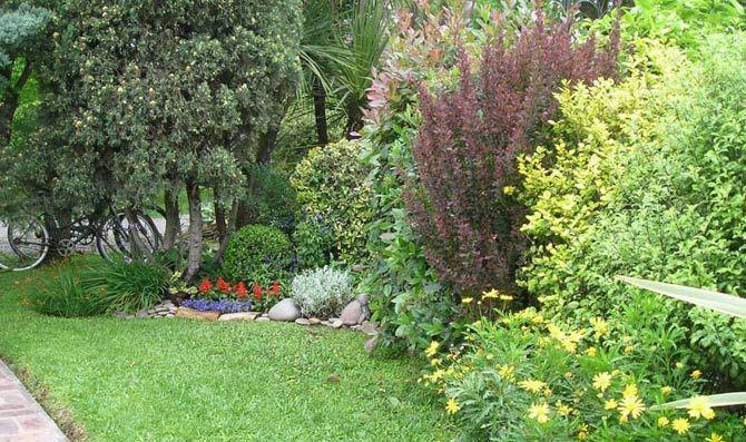 Las 25 mejores ideas sobre setos de jard n en pinterest - Setos de jardin ...