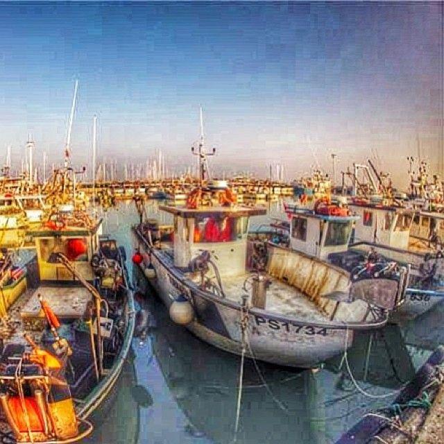 .@hotelbelmarcattolica | Barche in porto. Cattolica - Italy Adriatic Coast - Central Italy | Webstagram