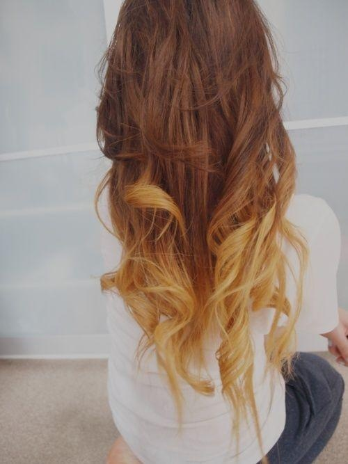 Natural brown with blonde highlights on the end.. Thinking about doing this when my hair grows longer