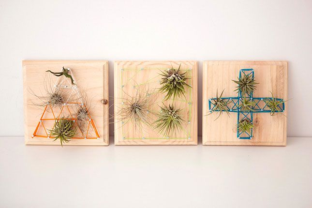 100 Creative DIY Wall Art Ideas to Decorate Your Space via Brit + Co. string art with air plants