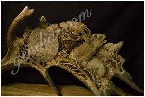carving in antler (rezba v paroží )