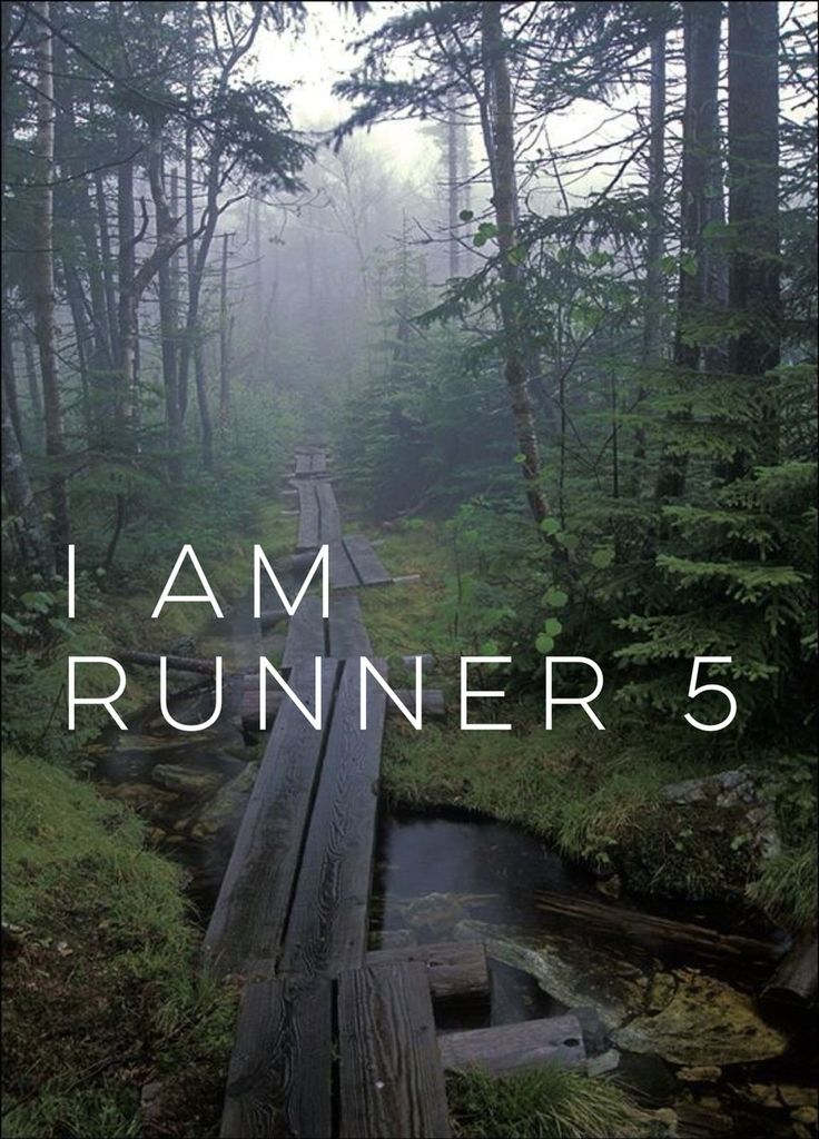 I am runner , zombies run