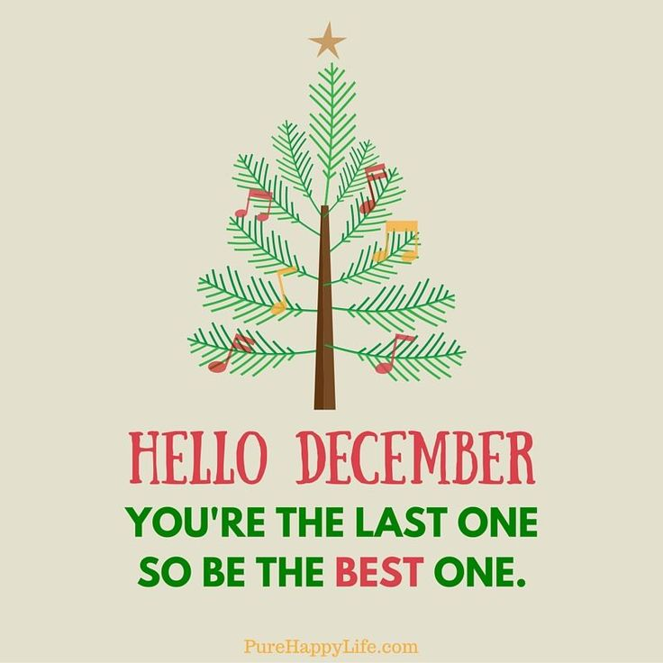 Hello December, You're The Last One So Be The Best One december hello december december images december quotes and sayings december image quotes december pictures hello december 2016