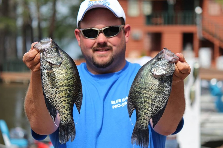 Crappie fishing at reelfoot lake with nelson northern at for Reelfoot lake crappie fishing