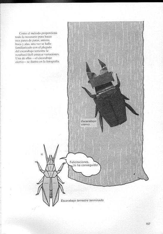 kunihiko kasahara y Toshie Takahama (Papiroflexia) - Origami para expertos 156_page156