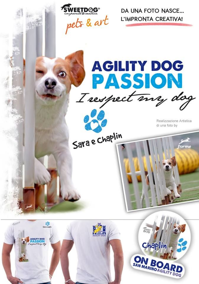 DOG: CHAPLIN (Beagle) - personalized dog t-shirt & sticker
