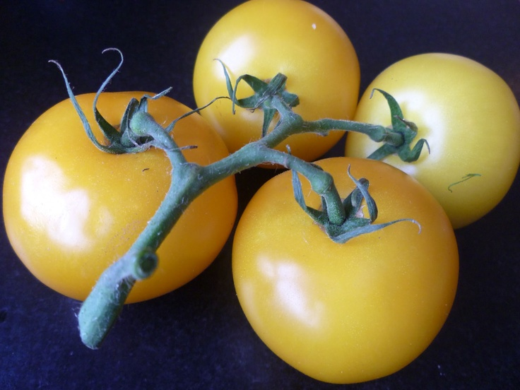 Adventures in fussy eating: Yellow tomatoes at the whistle stop cafe