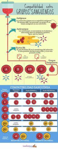 Los grupos sanguíneos. ¿Cuantos tipos de sangre existen?