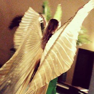 Time to fly #mahtab #isiswings #alasdeisis #skrzydlaizis #bellydance #bellydancer #danseorientale #danzadelvientre #bauchtanz #taniecbrzucha #dancer #baileoriental #danzaarabe #dancer #performance #danza #baile #dancadoventre #dancecoach #pokaz #show #dance #dancer #onstage #stage #dancing #danceshow #palmtree #bellydancecostume