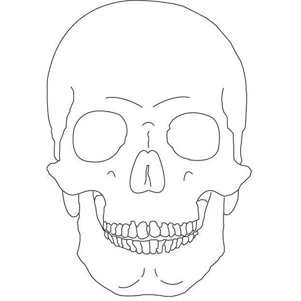 Skull (Outline Only) by Vicious - Fanart Central ❤ liked on Polyvore
