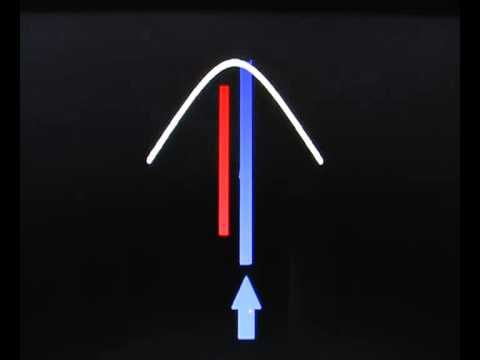 Наглядная демонстрация работы ДИАФРАГМЫ - двигателя крови, лимфы и воздуха при ПОЛНОМ ДЫХАНИИ ЙОГОВ.      Сердце не качает кровь - оно создаёт вибрации в системе кровообращения, которые уменьшают сопротивление сосудов продвижению крови. Очищайте сосуды - это Путь здоровья!     Гармоничное дыхание: выдох и вдох по 8 секунд - 8 ударов сердца. Частота сердца 1 Гц. В восьмёрке кровообращения течёт переменный электрический ток с частотой  1 Гц!
