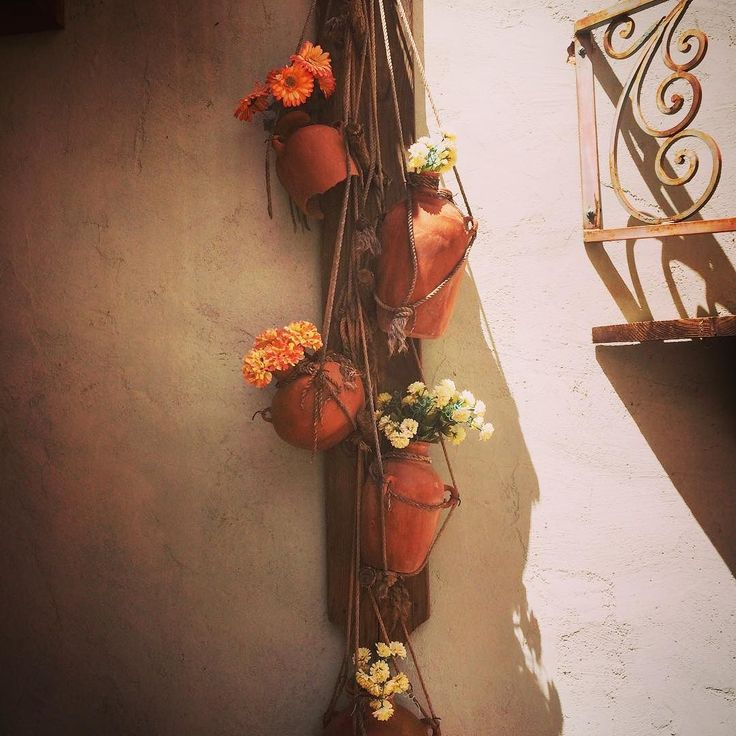 #oldtucson #moments . . . #tucson #arizona #usa #fivesneakers #travel #memories #enterior #travelblog #travelblogger #traveling #travelling #traveller #travelgram #instatravel #instagood #instadaily #instapic #instaphoto #iphonephotography #iphoneonly #family #summer #vacation #amerika #flower #wecollectmemories