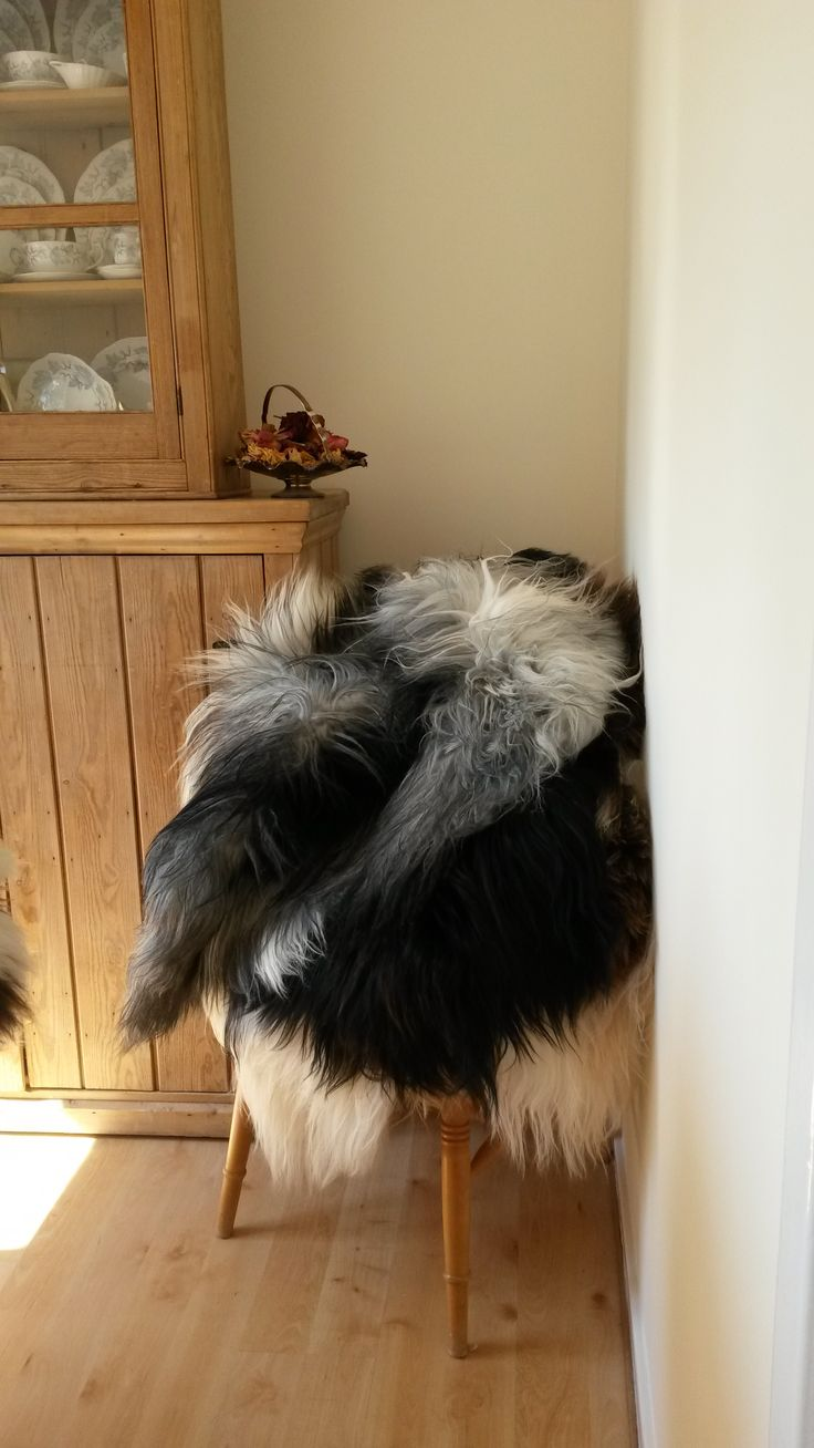 Ever wondered how best to clean your beautiful sheepskin